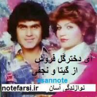 نت فارسی آی دختر گلفروش